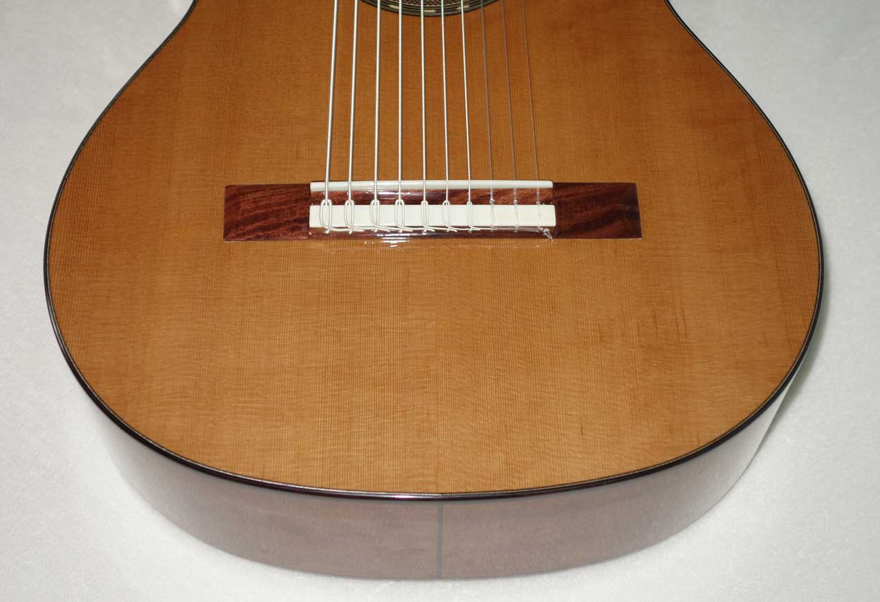 NEW 2017 Cathedral Guitars Model 125 10-String Classical Harp Guitar w/Hardshell Case