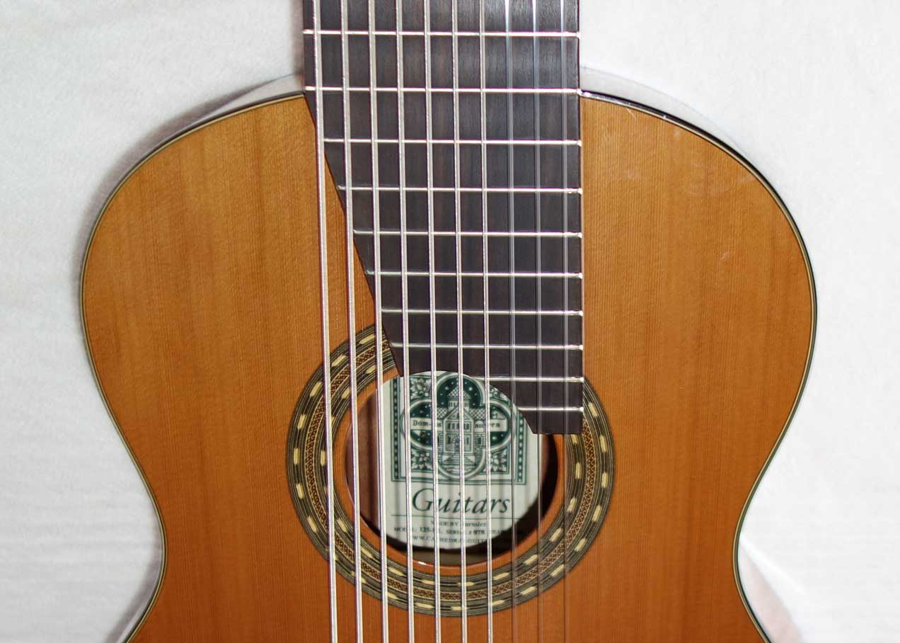 Used 2016 Cathedral Guitars Model 125EL 10-String Classical Harp Guitar w/BBand A2.2 Pickup, Hardshell Case