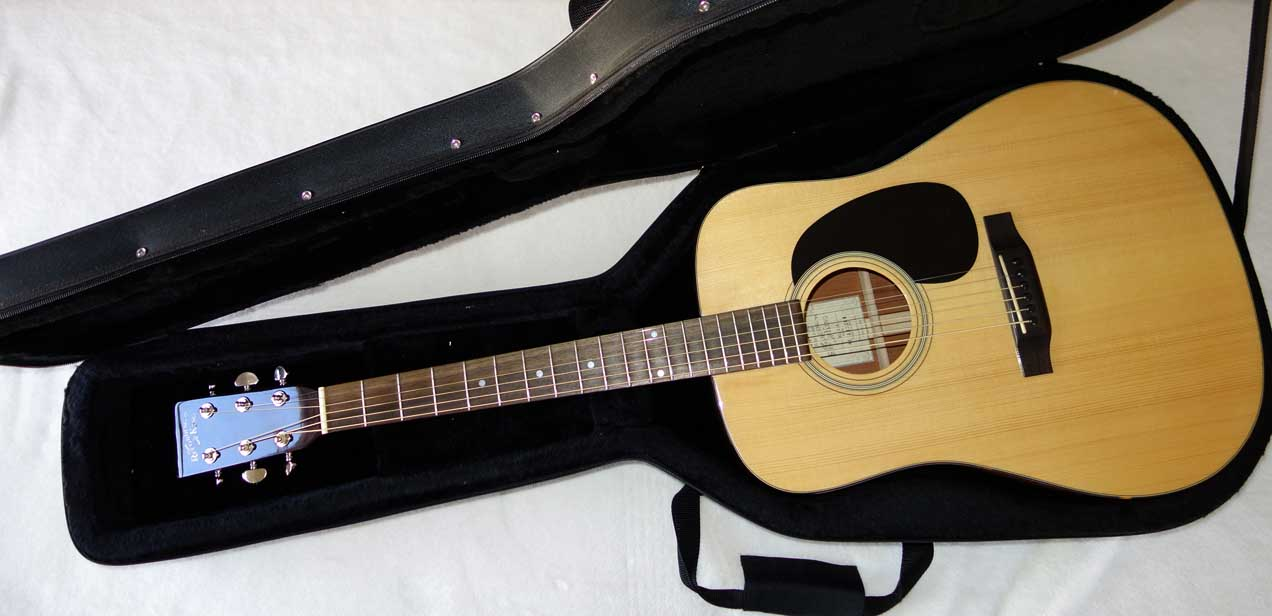 Used Recording King RD-310 All-Solid Dreadnought w/Adirondack Spruce