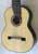 Bartolex SLS10EL 10-String Classical Harp Guitar