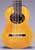 Rodolfo Cucculelli 10-String Classical Harp Guitar
