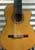 Stephen Kakos 10-String Classical Harp Guitar